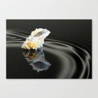 seashell Canvas Prints featuring Seashell by Lyn Evans