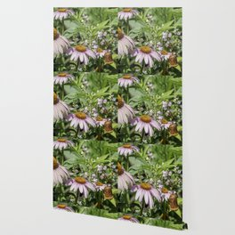 Dance of the Cone Flowers Wallpaper