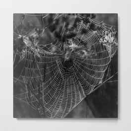 Morning Dew On Spiders Home Metal Print