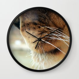 Whiskers. Wall Clock