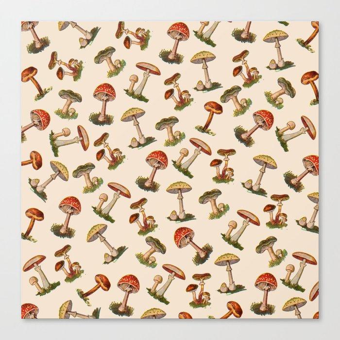 Magical Mushrooms Leinwanddruck