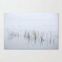 Wid Ducks. Foggy Sunrise At The Lake Canvas Print