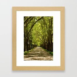 Summer Tunnel Framed Art Print