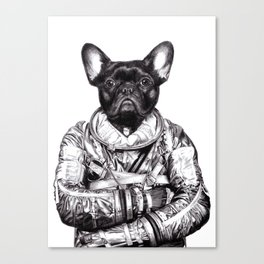 Astro Frog Canvas Print
