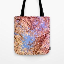 Cherry Blossom Sky Tote Bag
