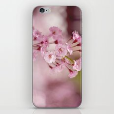 Weeping Willow Flowers iPhone & iPod Skin