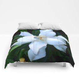 Gardenia Comforters