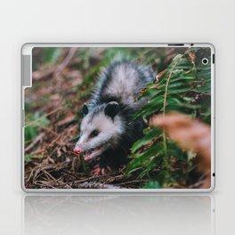 Hiss Laptop & iPad Skin
