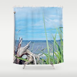Through Grass and Driftwood Shower Curtain