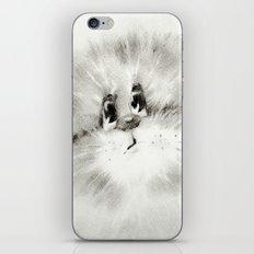 Surprised kitty iPhone & iPod Skin