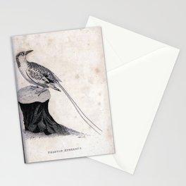 036 phaeton aethereus9 Stationery Cards