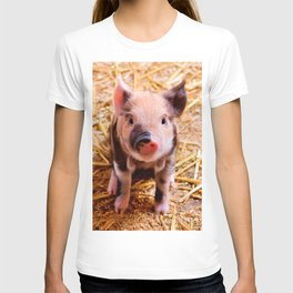 Cute Baby Piglet Farm Animals Babies T-shirt