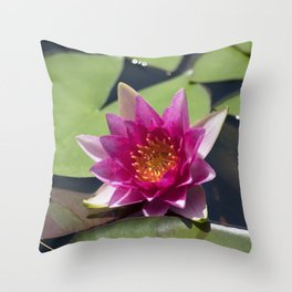Longwood Gardens - Spring Series 305 Throw Pillow