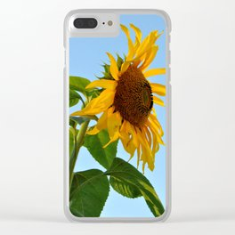 Profile Of A Sunflower Clear iPhone Case