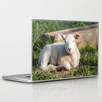 lamb Laptop & iPad Skins featuring lamb by Marcel Derweduwen