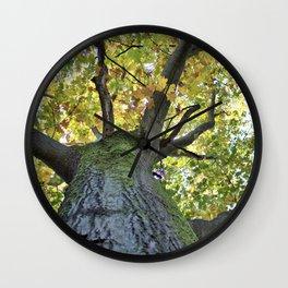 Giant Oak Tree Golden Leaves Wall Clock