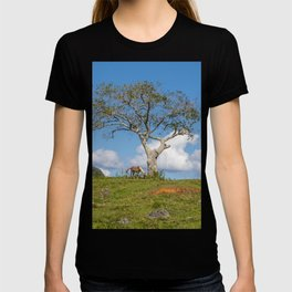 Single tree in Vinales Valley, Cuba T-shirt