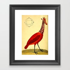 Bird Giraffe Framed Art Print