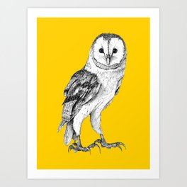 Barn Owl - Drawing In Black Pen On Vintage Yellow Art Print