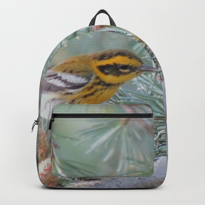 A Townsend's Warbler Spruces Up Backpack