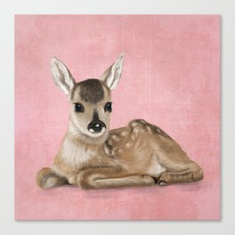 Small fawn Canvas Print