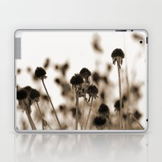 Daisy Heads - Winter Laptop & iPad Skin