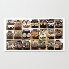 Safari Collection Canvas Print