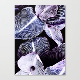 Unbridled - violet night Canvas Print