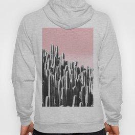 Cactus B&W & Sunset Hoody