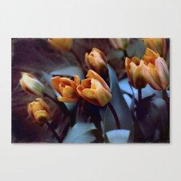 Tulips with Attitude Canvas Print