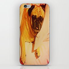 PUG LOVE: Will you bring me breakfast in bed? iPhone Skin