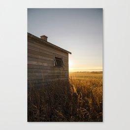 Fall Glow Canvas Print