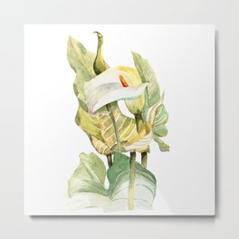 Watercolor hand painted illustration with callas in gentle tone Metal Print