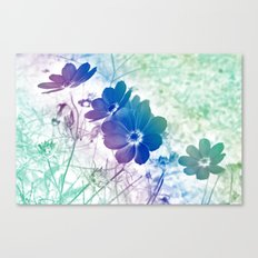 Rainbow Cosmos Canvas Print
