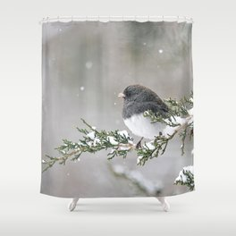 Snowbird on a Snowy Branch (Junco) Shower Curtain