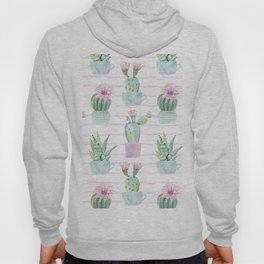 Cute Potted Cacti Stripe Pattern Hoody