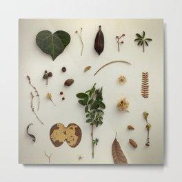 Botanical Party 006 Metal Print