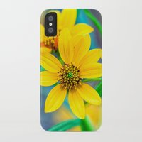 geology iPhone & iPod Cases featuring Yellow Stone Mountain Daisies In The Fall by Mark E Tisdale