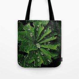 Dew On Rose Scented Geranium Leaves Tote Bag