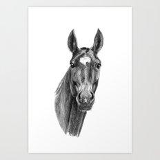 American Horse SK112 Art Print