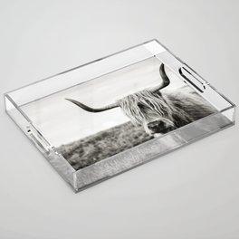 Highland Cow Acrylic Tray