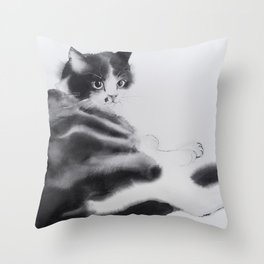 Fulopke our cat is resting Throw Pillow