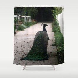 Peacock Path Shower Curtain