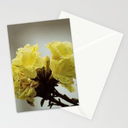 Yellow Tree Flower  Stationery Cards