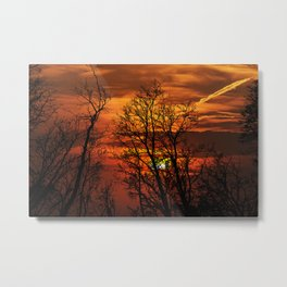 Deadly trees silhouette on sunset Metal Print