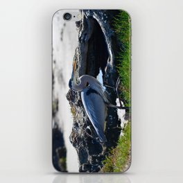posing heron iPhone Skin
