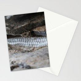 snake skin Stationery Cards