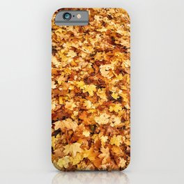 Gold yellow fall maple leaves iPhone Case