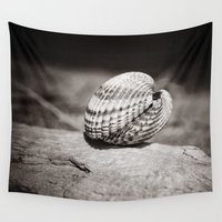 seashell Wall Tapestries featuring A solitary seashell. by davehare