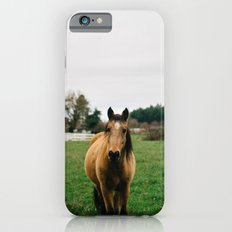 Horse // Oregon Slim Case iPhone 6s
